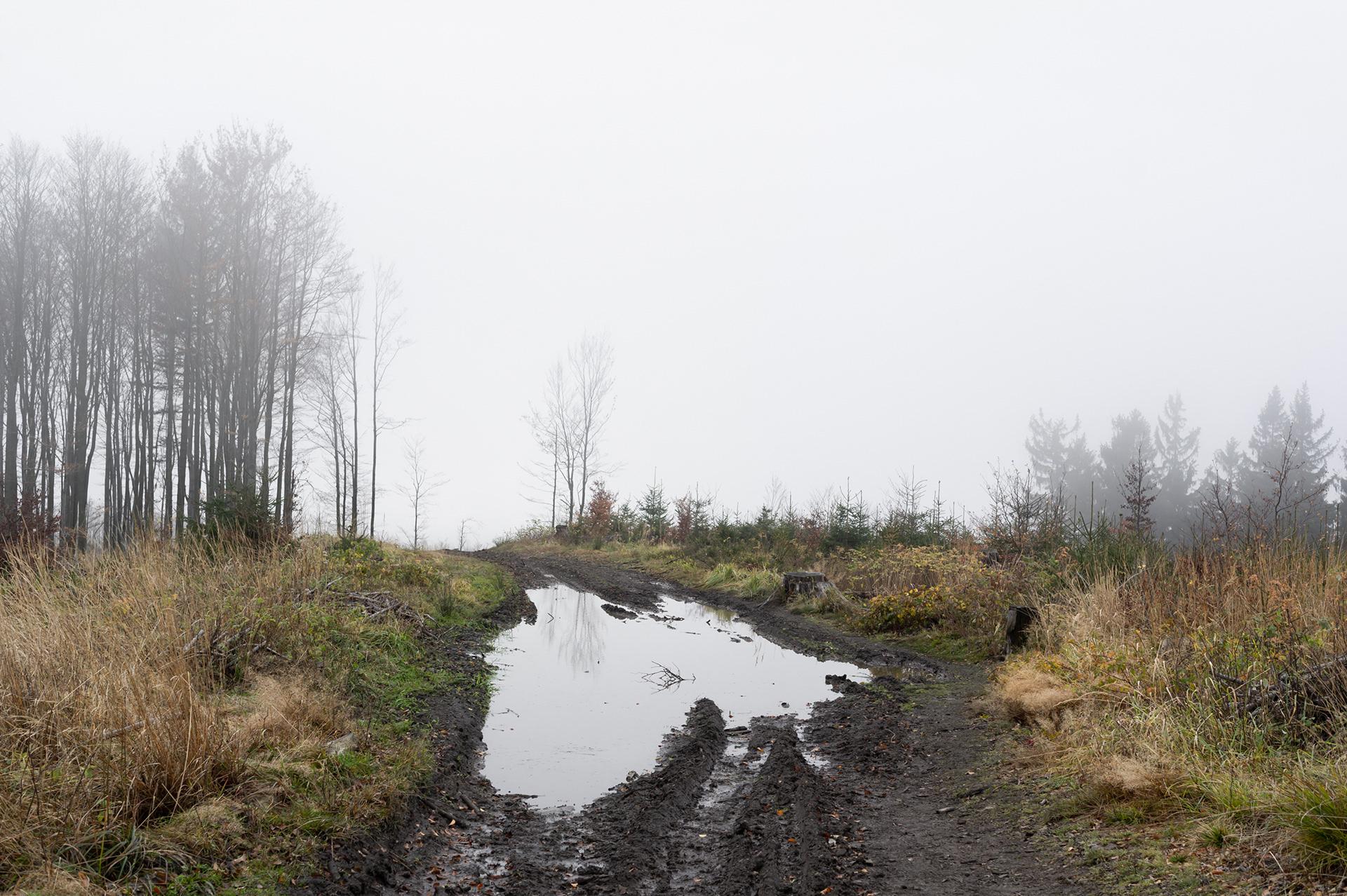 Foggy landscape with puddle, Kozubová, Beskid mountains, Czech Republic