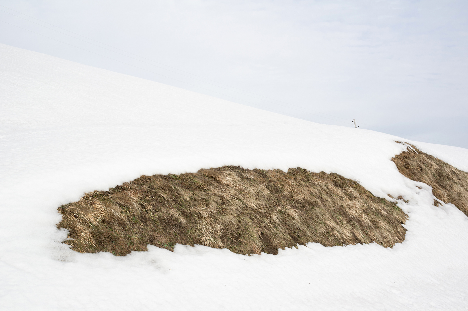Snowy landscape with uncovered dry snow, Pohorje, Slovenia