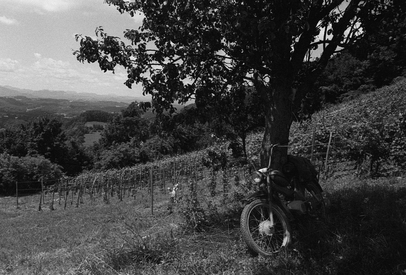 Old retro motorbike by the tree, Strmec pri Svetem Florijanu, Rogaška Slatina, Slovenia